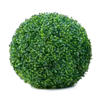 Boxwood Ball by Europlanters