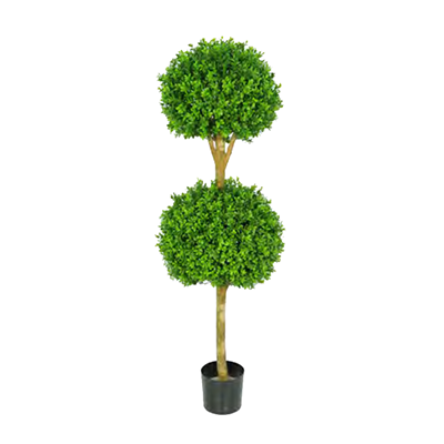 Buxus Double Ball Treel by Europlanters