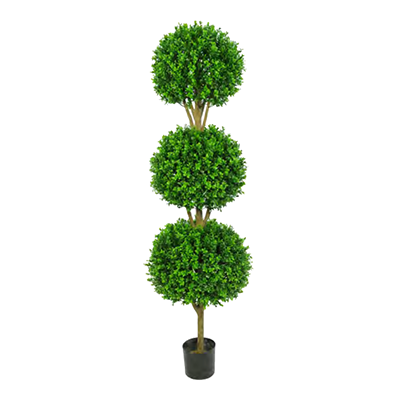 Buxus Triple Ball Tree by Europlanters