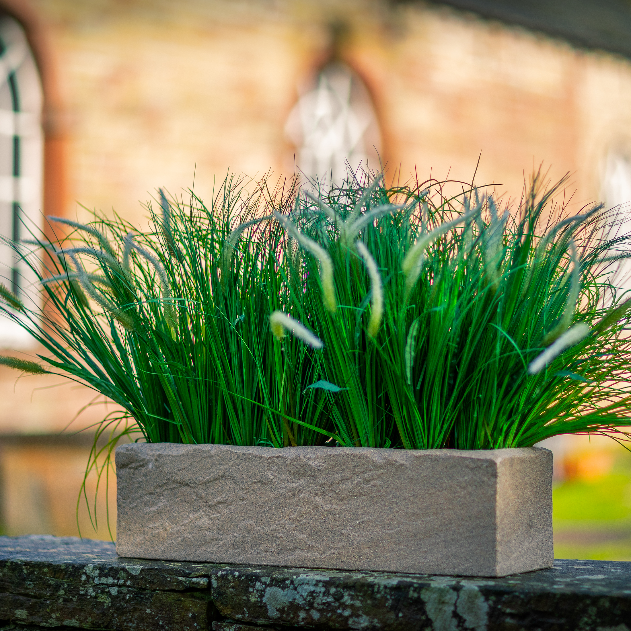 Stone-look-trough-plastic-planter-by-europlanters