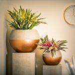 SPHERES-WITH-LIGHT-COPPER-BAND-planters-by-europlanters