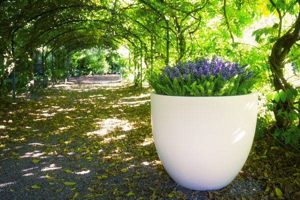 BRADWELL Planter in GRP