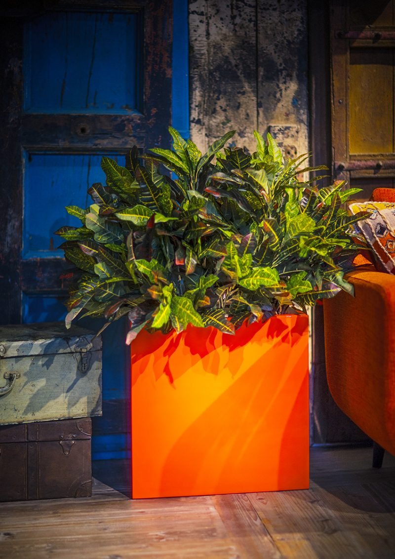 CUBE PLANTER by EUROPLANTERS