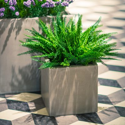 Cubes-in-Concrete-Effect-by-Europlanters