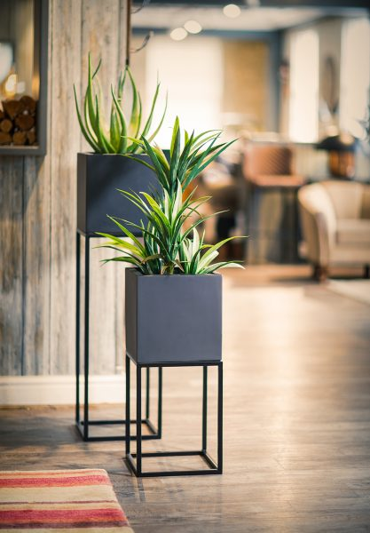 Oakley-Narrow-Stand-Group-by-Europlanters