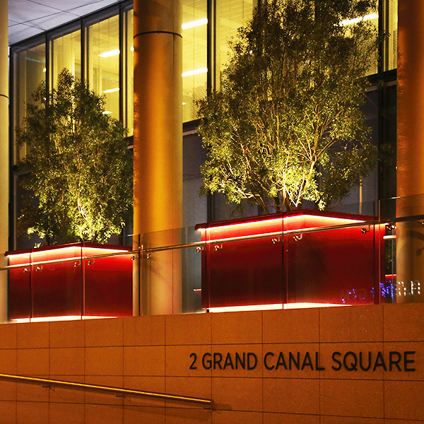 ILLUMINATION LIGHTING FOR PLANTERS by EUROPLANTERS