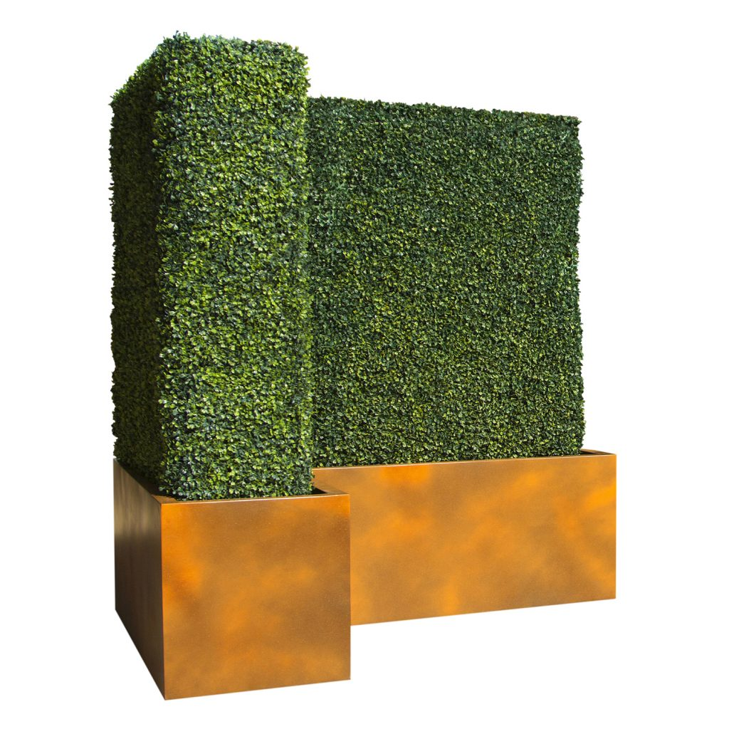 Topiary hedge by Europlanters