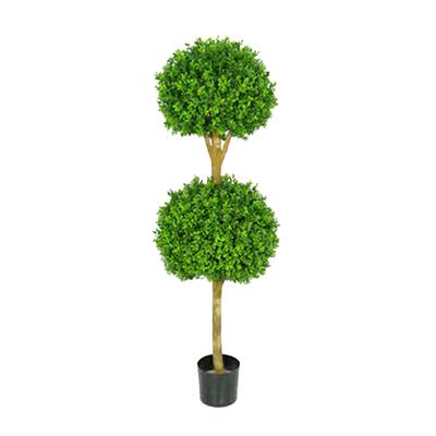 Buxus Double Ball Treel by Europlanters