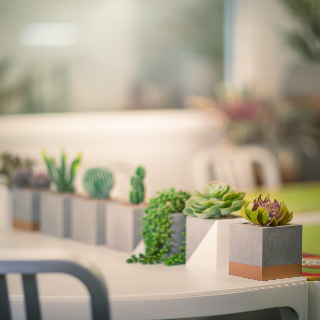 Mini-Cubes-planters-by-europlanters