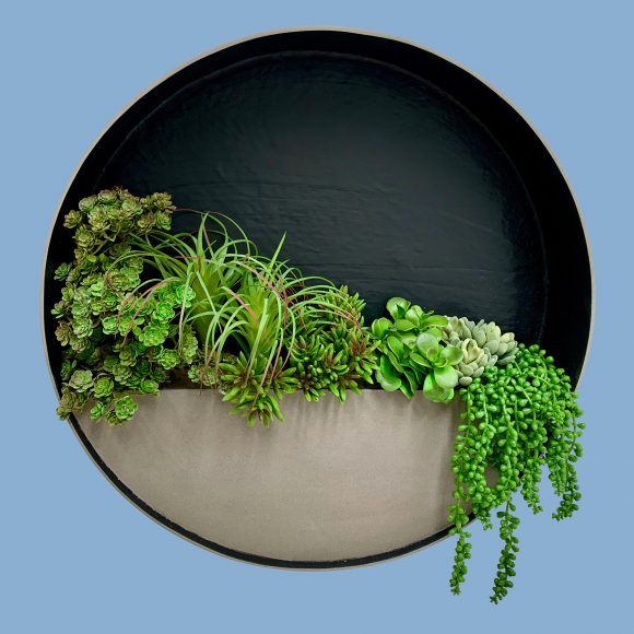 Circular-Wall-Planter-by-europlanters