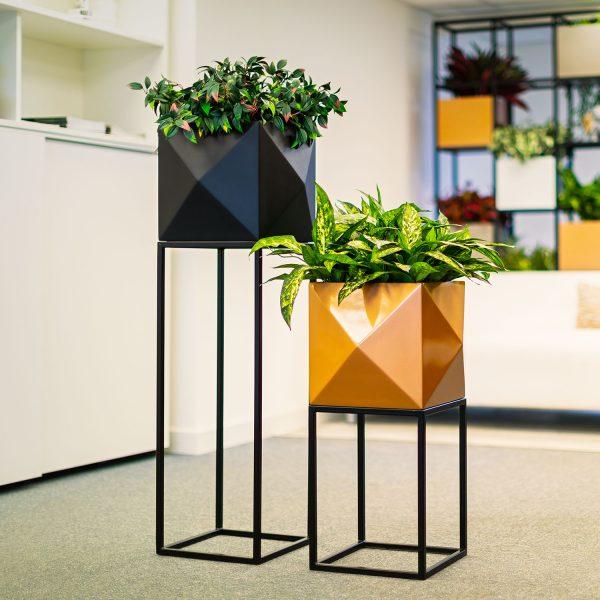 Diamond-Oakley-planters-by-Europlanters