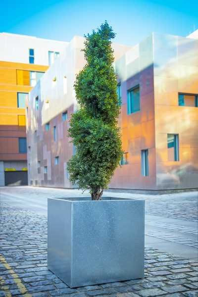 GALVANISED CUBE Planter in Metal