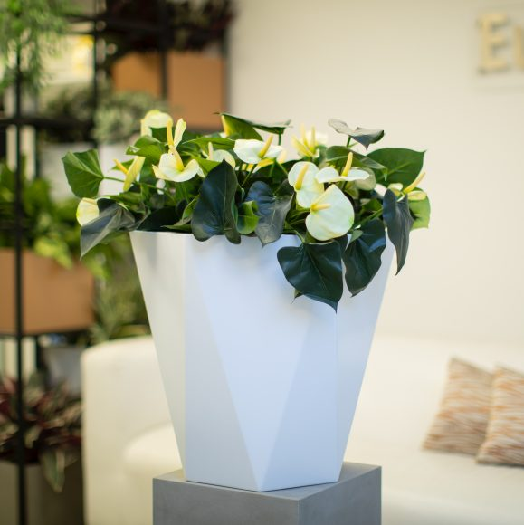 Hebden Tall Vase by Europlanters