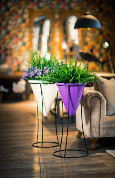 Kingsley-Group-Stand-by-Europlanters